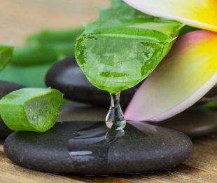 Mit Aloe Vera Gel kannst Du Deine Augenentzündung linder, da es entzündungshemmend wirkt.