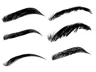 Für verschiedene Augenbrauenformen gibt es natürlich auch unterschiedliche Schablonen.