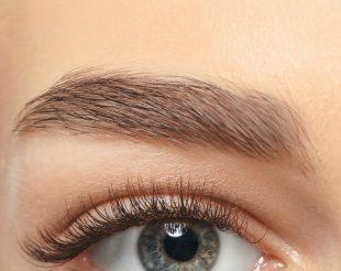 Augenbraunen Serum